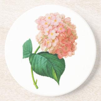 Pink Hydrangea by Pierre Joseph Redoute Coaster