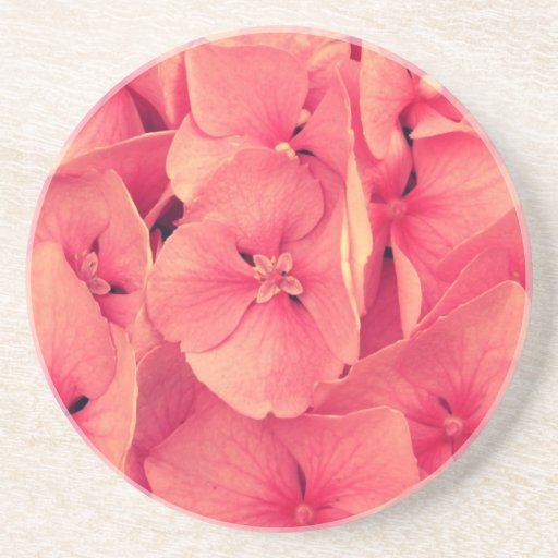 Pink hydrangea coaster