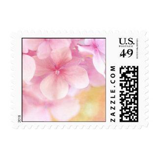 Pink Hydrangea Dream ... Square Postage Stamp