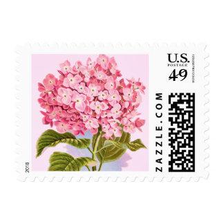 Pink Hydrangea Flower Postage Stamp