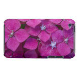 Pink Hydrangea Flowers iPod Touch Case