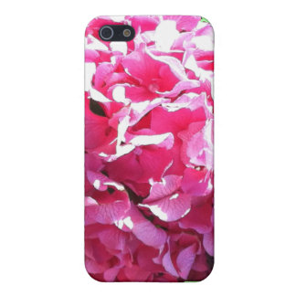 Pink Hydrangea iPhone4 Case