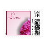 Pink Hydrangea Love Postage