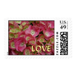 Pink Hydrangea Love Postage Stamp
