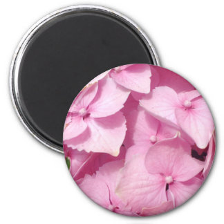 Pink Hydrangea magnet