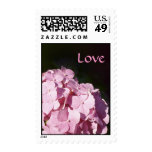Pink Hydrangea Postage Stamps