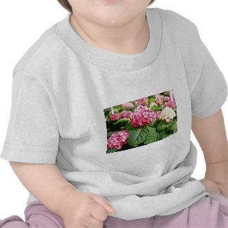 Pink Hydrangea Species flowers Tshirt