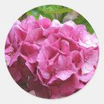 Pink Hydrangea Sticker