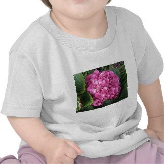 Pink Hydrangea Shirts