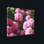 "Pink Hydrangeas Canvas Print<br><div class=""desc"">A photo of pink hydrangeas on a sunny day</div>"