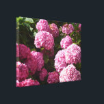 "Pink Hydrangeas Canvas Print<br><div class=""desc"">A photo of pink hydrangeas on a sunny day</div>"