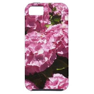 Pink Hydrangeas Photograph iPhone SE/5/5s Case