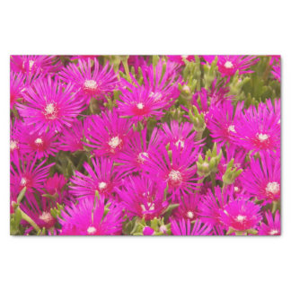 """Pink Ice Plants Floral 10"""" X 15"""" Tissue Paper"""
