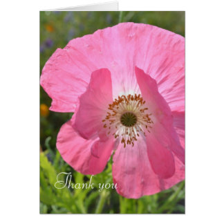 Pink Iceland Poppy Thank you Card