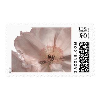 Pink Iceland Poppy Wedding Postage