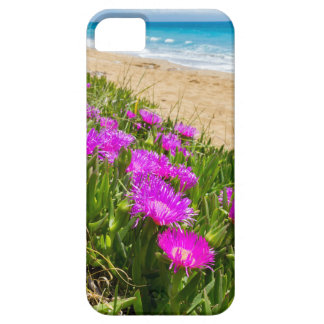 Pink icicle plants at coast in Greece iPhone SE/5/5s Case