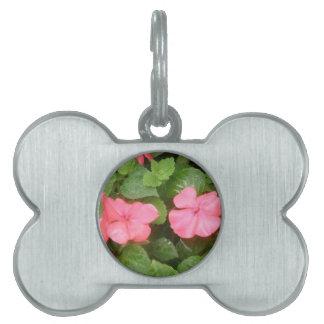 Pink Impatiens Flowers Pet Tag