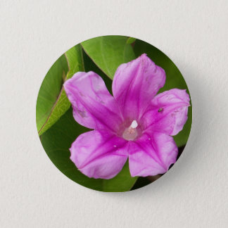 Pink Impatiens Pinback Button