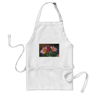 Pink Inca Lily flowers and meaning Aprons