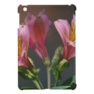 Pink Inca Lily flowers and meaning iPad Mini Case