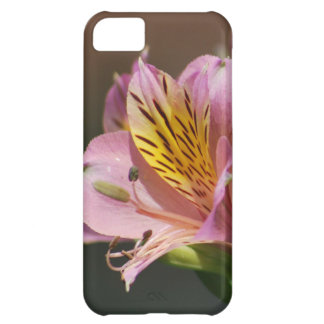 Pink Inca Lily flowers and meaning iPhone 5C Case
