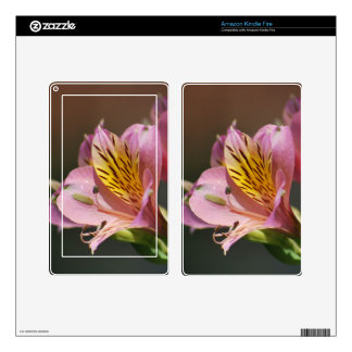 Pink Inca Lily flowers and meaning Kindle Fire Decals
