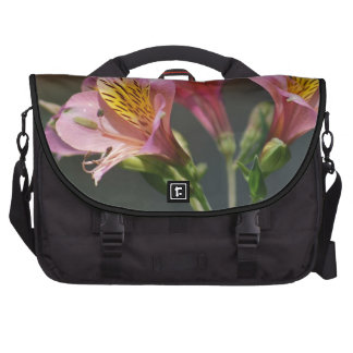 Pink Inca Lily flowers and meaning Bags For Laptop