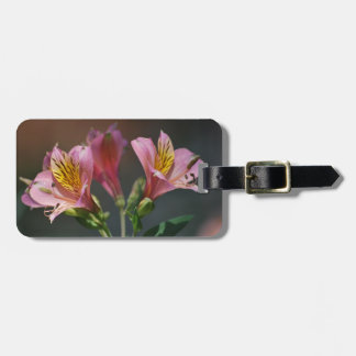 Pink Inca Lily flowers and meaning Tags For Luggage