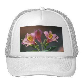 Pink Inca Lily flowers and meaning Mesh Hat