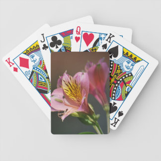 Pink Inca Lily flowers and meaning Bicycle Playing Cards