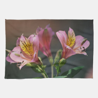 Pink Inca Lily flowers and meaning Towels