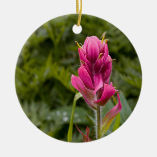 Pink Indian Paintbrush Ceramic Ornament