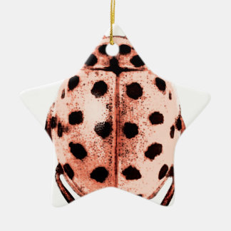 pink insect ladybird trash Double-Sided star ceramic christmas ornament