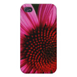 Pink iPhone 4 Covers