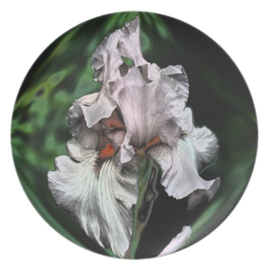 Pink Iris Abstract Floral Decorative Plate