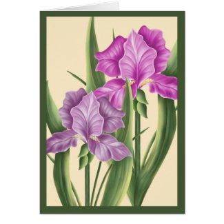 Pink Iris card