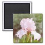 Pink Iris - Vanity Fridge Magnet