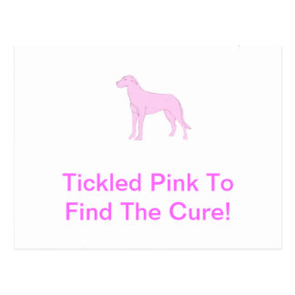 Pink Irish Wolfhound Postcard