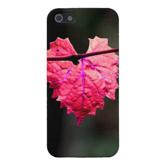 Pink Ivy Heart iPhone 5 case