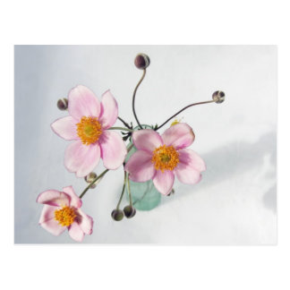 Pink Japanese Anenomes in a Green Vase Postcard
