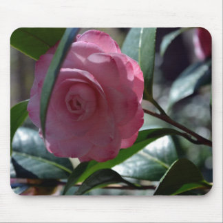 Pink Japanese Camellia Mouse Pad