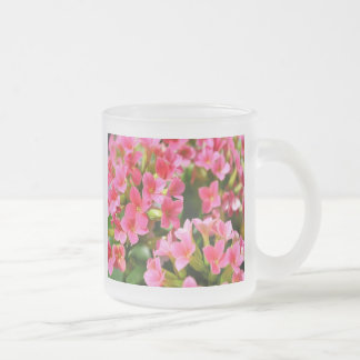 Pink Kalanchoes Frosted Glass Coffee Mug