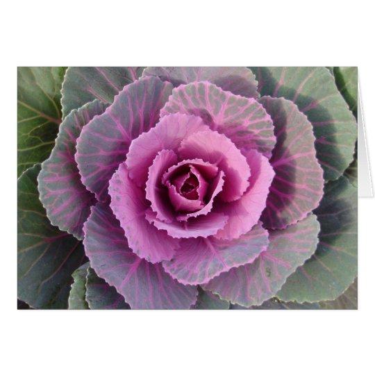 Pink Kale Card