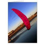 Pink Kite Greeting Card
