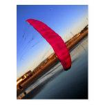 Pink Kite Postcards