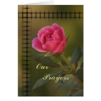 Pink Knockout Prayer card- customize Card