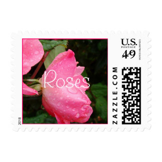 Pink Knockout Rose Stamp- personalize