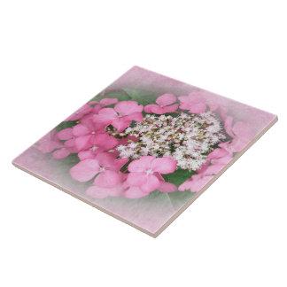 Pink Lace Cap Hydrangea Flowers Ceramic Tile