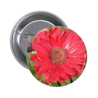 pink lady 2 2 inch round button