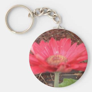 pink lady 3 basic round button keychain